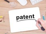 定义授予专利权的外观设计