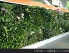 北京植物墙定做植物墙厂家