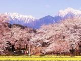 大连育才日语学校 大连学习日语的地方 大连日语学校