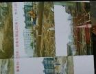 威士重工混凝土输送泵销售