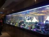 天河海鲜池制作广州海鲜池制作费用 海鲜池安装费用 洋清水族