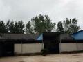 出租定远县吴圩镇大米加工厂厂房和设备