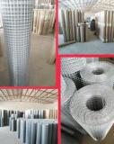 买铁丝电焊网当然还是选彰澜丝网制品,信誉好的电焊网