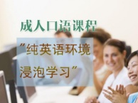 上海浦东成人英语培训学校,成人英语口语培训,外教授课效果好