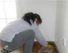 专业家庭清扫 新居开荒保洁 重品质 讲诚信