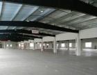 新站区京东方附近1500平方钢构厂房出租