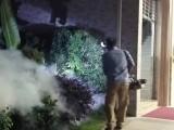 深圳杀虫公司 杀蟑螂公司 灭鼠公司