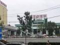 公司自有项目:临街旺铺独栋招商 业态广泛 可分租,