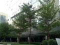 160平 精装写字楼 免中介 享特惠 临县后BRT