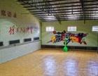 室内足球,篮球体育馆