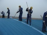 上海松江区厂房彩钢瓦安装 维修 更换,彩钢瓦喷漆翻新
