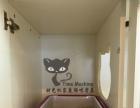 时光机家庭猫咪寄养+洗澡药浴