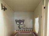 时光机家庭猫咪寄养 洗澡药浴