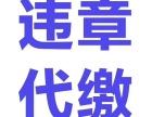 鲁M滨州委托车辆保险代缴违章罚款补证