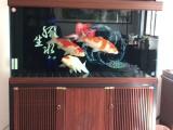 杭州鱼缸水族箱定制 鱼缸送货安装