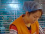 熙卡商业影视为您提供河南影视公司,服务100%