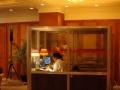 太原本地同声传译设备租赁同传译员输送速记服务