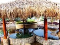 赣州周末去哪玩 赣州三百山温泉度假游1日游
