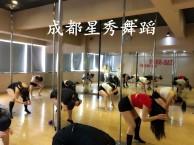 成都哪里有钢管舞培训班 钢管舞教练培训零基础学星秀舞蹈钢管舞