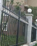 厂家批发锌钢绿化护栏 河北高质量的锌钢绿化围栏哪里有售