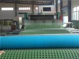 浙江排水板设备价格 青岛品牌好的HDPE排水板生产线厂家直销