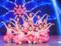 在梦华舞蹈上课,外出演出的机会多吗