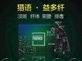 深圳艾丽欧公司大量招收合伙人,宝妈,上班族,学生