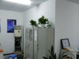 杭州上城京绿植租售花卉租摆室内外绿化花木批发