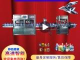 北京洗衣液灌裝機廠家 潤滑油灌裝機通用 廣州雄韜智能設備