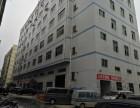 松岗2栋红本厂房出售价格6500每平方米