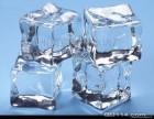康达制冰公司 专业配送天津各区食用冰上门 欢迎咨询
