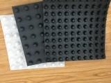广东供应 园林绿化阻根板 蓄排水板 可定制