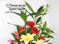 七彩鲜花花店加盟 七彩鲜花花店加盟加盟招商
