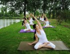零基础瑜伽导师培训招生中 松岗瑜伽培训