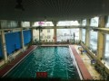 个人提供一对一游泳指导陪练