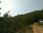 福山门楼 诸留王村东2公里种植养殖综合体50亩