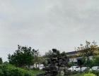 大平米库房出租,适合电商,淘宝,快递,正规园区