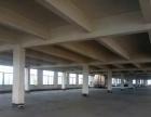 新塘独院10000平方标准厂房出租可分租