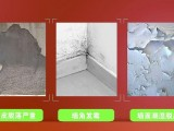 广州涂艺旧房翻新之墙面翻新