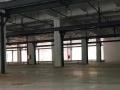 坑梓、新圩带5吨行吊钢构厂房1700平方出租
