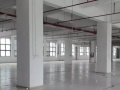 丹竹头康桥花园2500平米带装修厂房仓库出租