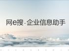 武汉网e搜人工智能品牌推广平台