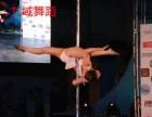 南京钢管舞培训,0基础教学包教会,南京九域舞蹈培训