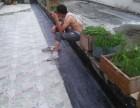 杭州,专业防水补漏,防腐外墙电梯井补漏等工程