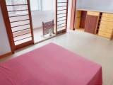 南院门 5室以上 1厅 合租