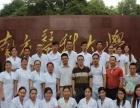 正骨推拿复位手法学习哪里有 广州中医针灸推拿培训