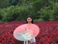 柳州三门江景区花季 约拍吗?柳州5152高端摄影