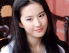 钟丽缇 刘亦菲 那英等明星一手经纪,广告代言,商业活动预约中