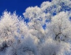 雪乡雪谷冰雪旅游