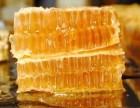 睡觉前的蜂蜜减肥法!温州哪里有卖纯天然蜂蜜的